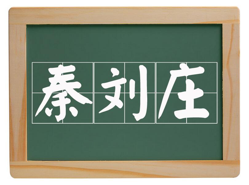 大辛庄办事处秦刘庄村
