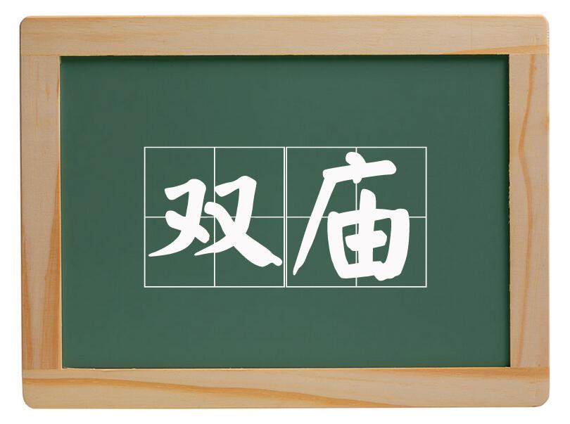 老赵庄镇双庙村