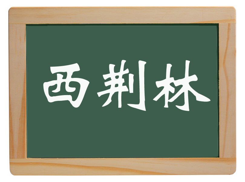 尚店乡西荆林村