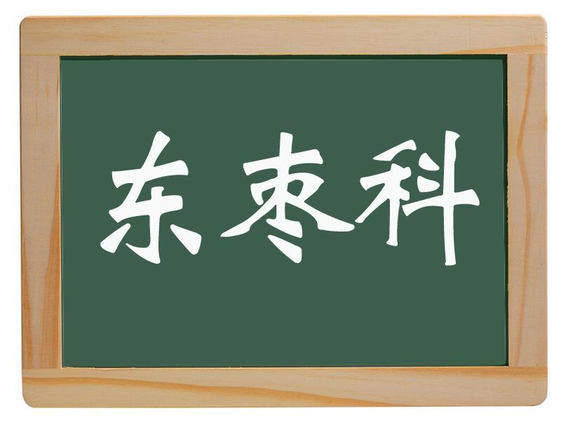 唐园镇东枣科村