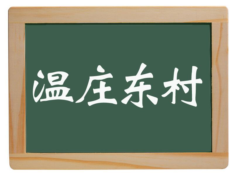 戴湾乡温庄东村