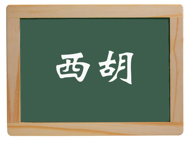 新华办事处西胡里庄村