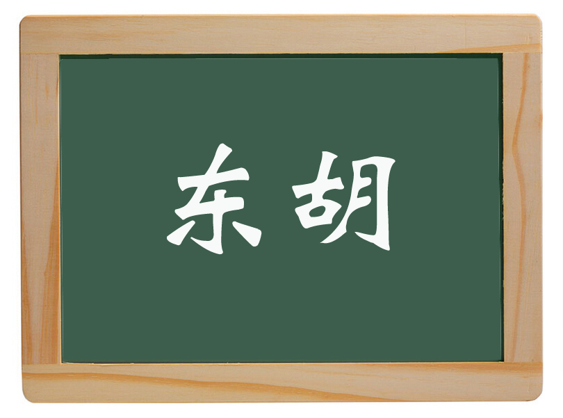新华办处东胡里庄村