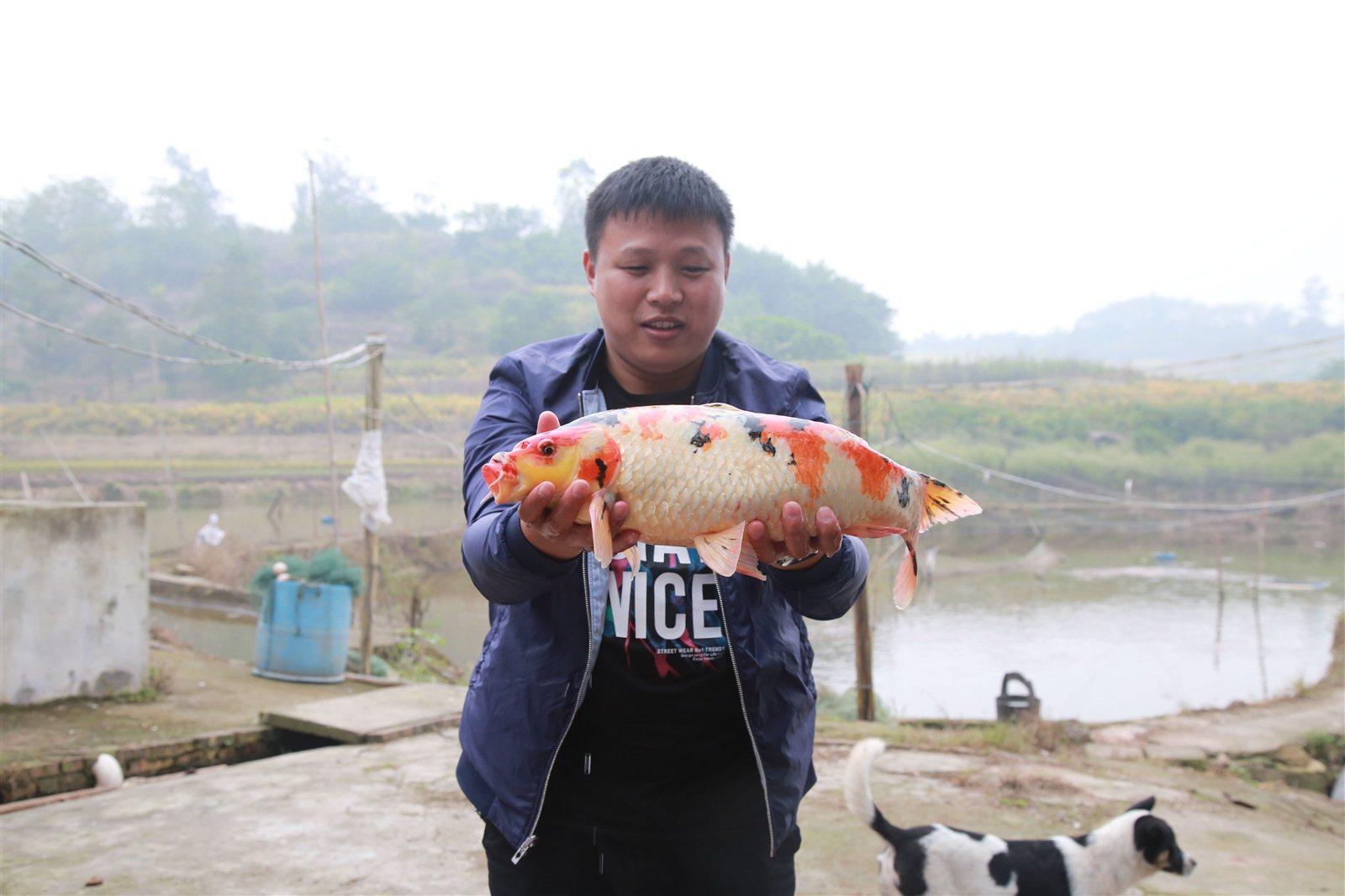10红光村――李强