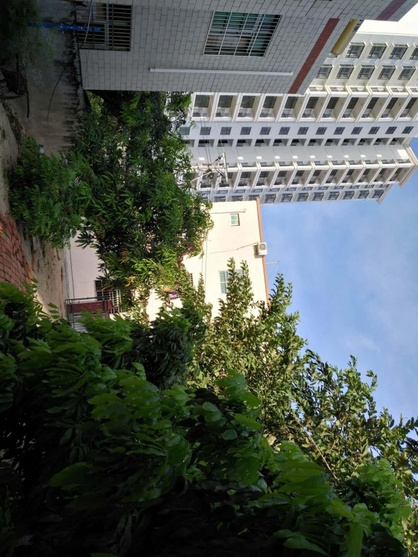 颐民小区后(三角公园附近)2室 1厅 1卫110万元