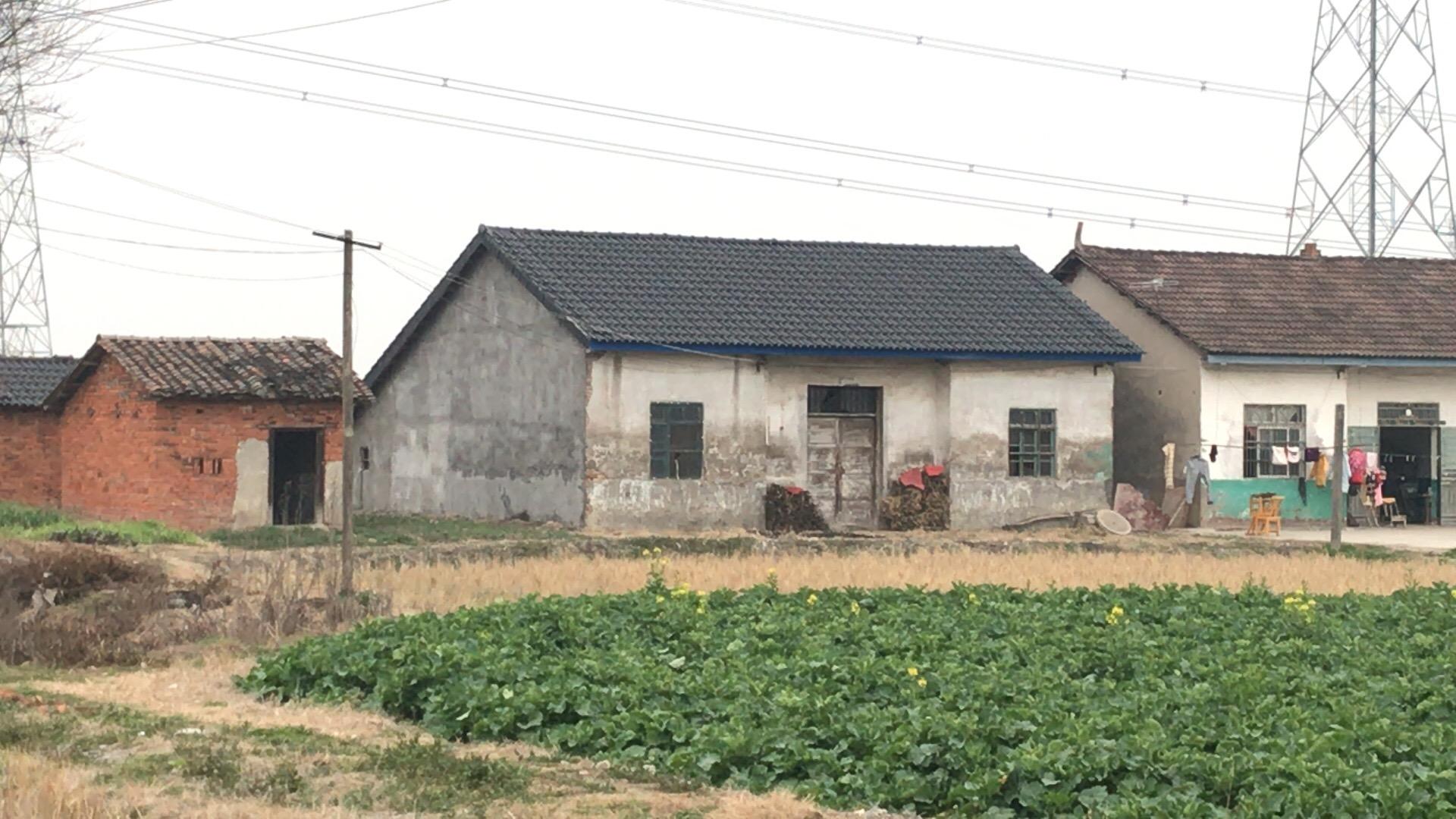 问安镇郑家井村10亩土地,房屋出售