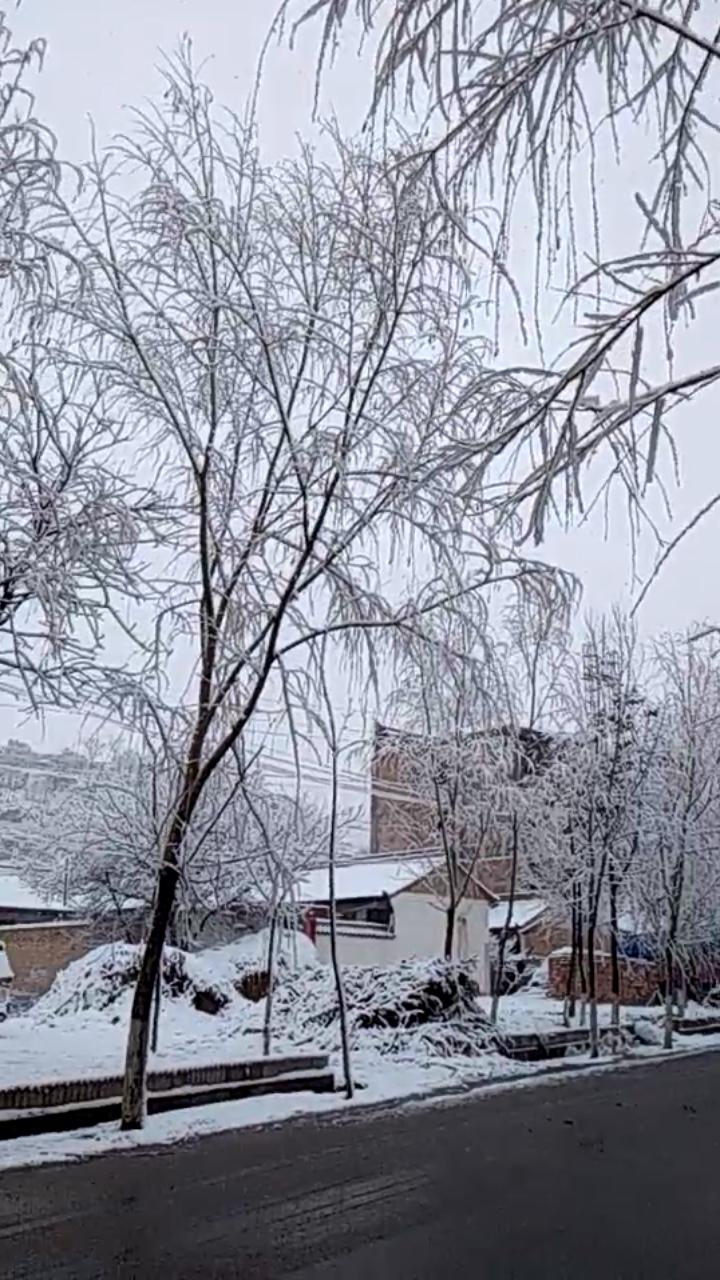 秦安五营大地湾雪景