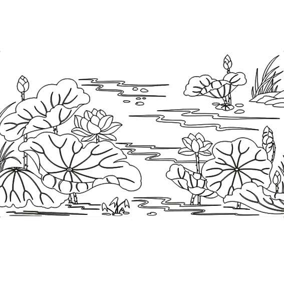 荷花 荷叶 池塘 简笔画