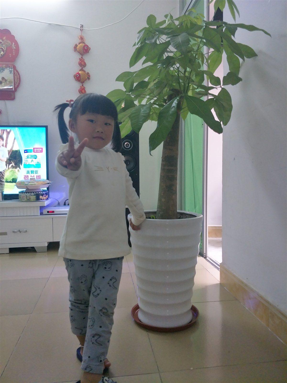 716128林辉丹