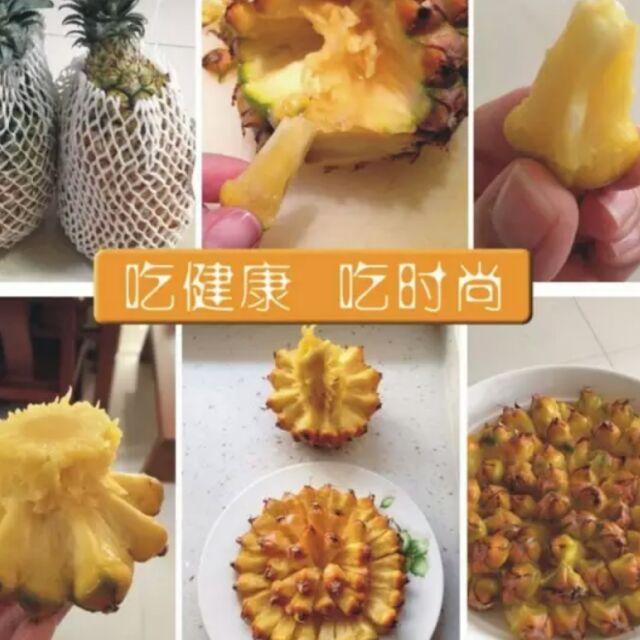 手撕菠萝~陈鸿林
