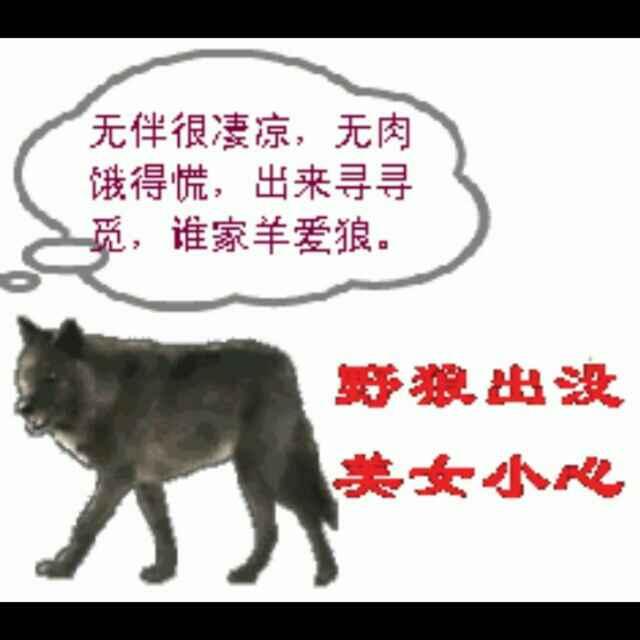 王子・・・野狼