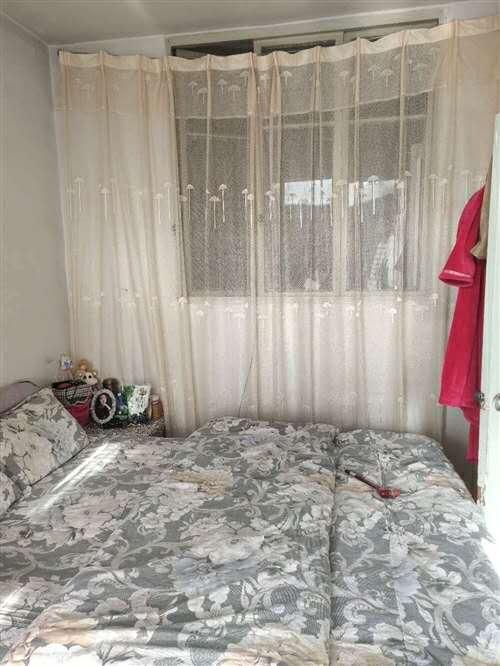 青年街2室 1厅 1卫12万元