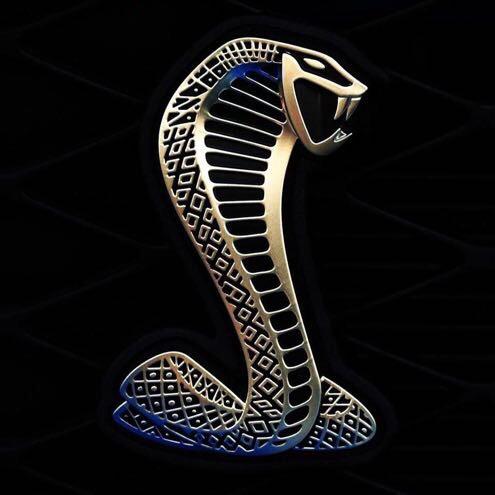 江西�M南青���B蛇��