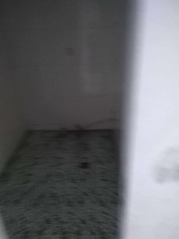 张家塔家属楼3室 2厅 2卫面议